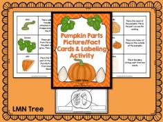 Classroom Freebies: Free Pumpkin Fact Cards and Labeling Activity Packet