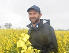 Sclero infections to expand  Rohan Brill, NSW DPI, says grading canola seed can help improve germination rates, with larger seed achieving better results.
