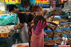 Image result for south korean seafood oyster